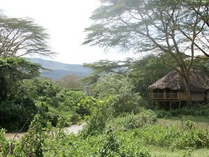 Kigio Wildlife Camp
