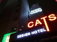 Hotel Cats