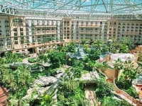 Gaylord Palms Resort And Spa