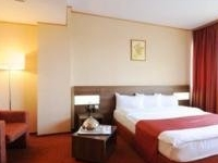 Rin Airport Hotel (Otopeni)