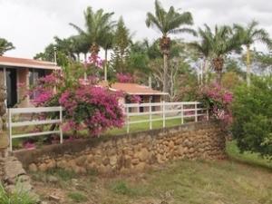 Loma Real