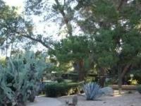 Smoke Tree Resort and Bungalows