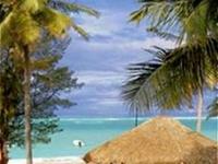 Tropical Clubs Bavaro