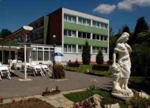Komfort Hotel Platan Harkany