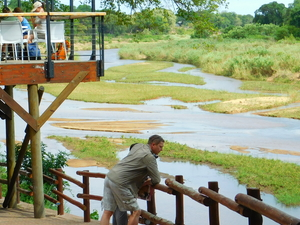 Fully Inclusive Camping Safari Experience in the Kruger Park Photos