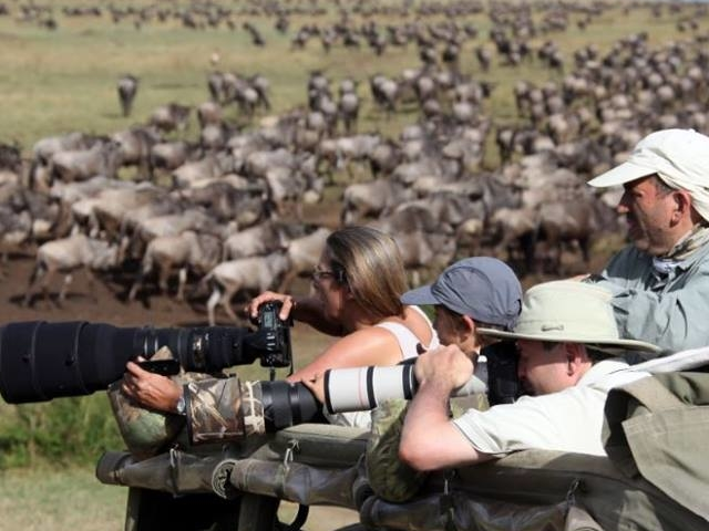 The Great Migration Safari of Tanzania Photos