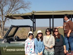 Bushveld Safari Photos