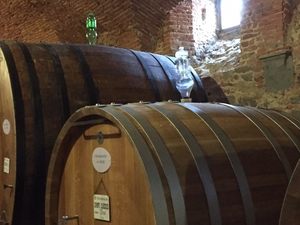 Private Winery Tour in Montalcino