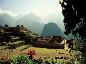 Cuzco Express Photos