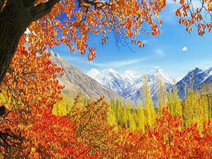 Autumn Tour to Hunza Valley, Pakistan Photos