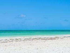 Zanzibar Beach Holiday Package Fotos