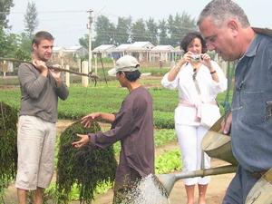 Da Nang - Hoi An - Tra Que Herb Village - Farming Photos
