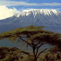 Kilimanjaroe Safarish