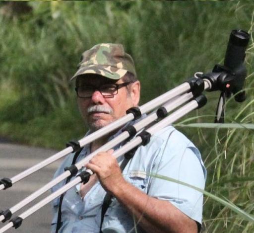 Panamá Birding Guide Photos