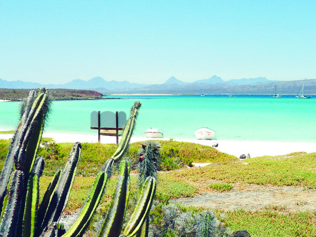 Island Hopping and Nature Watch in Loreto Photos