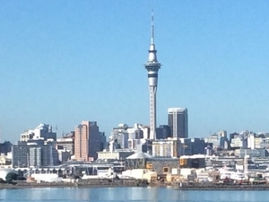 Half Day Auckland Tour
