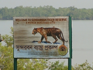 Sundarban Tour Package Photos