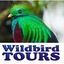 Wildbirdtours