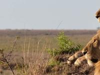 Samburu Nakuru Mara