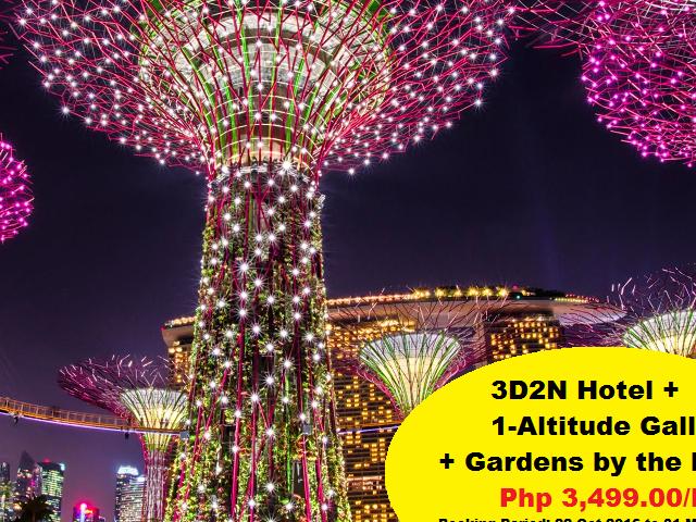 Singapore's Free and Easy City Tour Photos