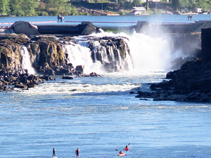 Willamette Falls Tour