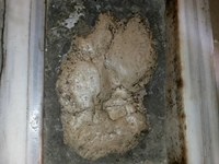 Foot Print Of Prophet Jesus