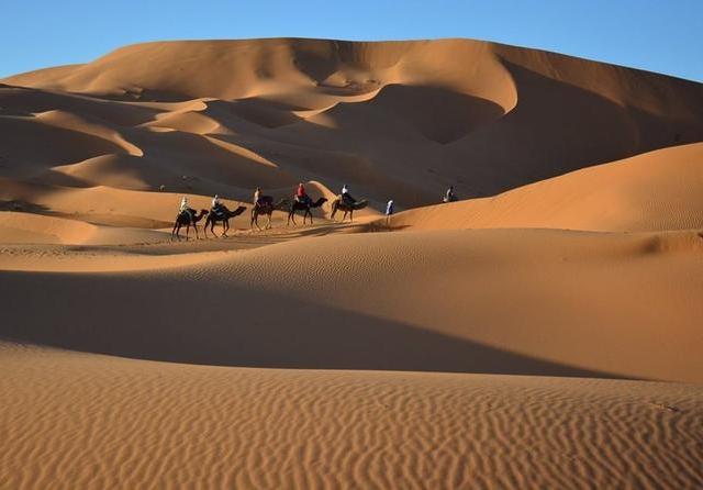 Sahara Desert Trip from Marrakech Photos
