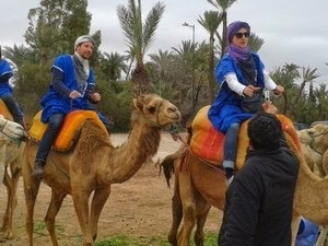 Marrakech Half Day Camel Ride in Palm Grove Fotos