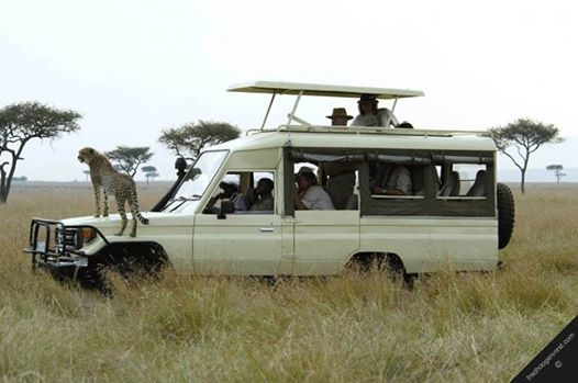 Tanzania Budget Safaris Photos