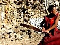 Monks Cricket