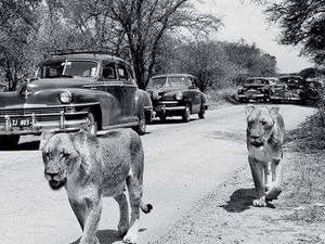 Kruger Historical Full Kruger Tour