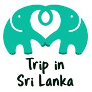 Trip Lanka