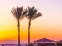Cairo Pyramids & Nile Cruise & Sharm El Sheikh by Flight