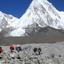 Dipesh Shrestha