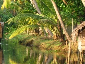 Outing Kerala Tourism Packages Photos