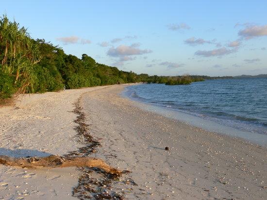 Pemba Island Tour Photos