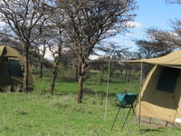 4 DAYS / 3NIGHT MID/RANGE LODGE & CAMPING SAFARIS