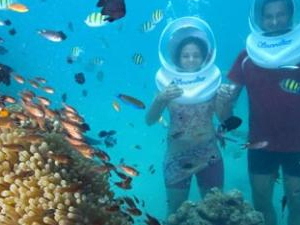 Andaman Honeymoon Packages Photos