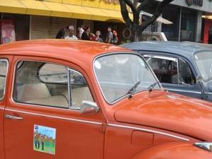 Vintage VW Ride - Volkswagen Beetles / Bus Photos