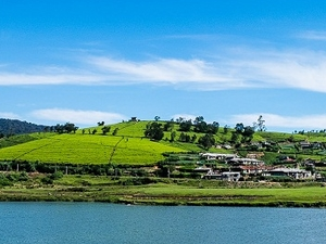 Explore the Beauty of Sri Lanka in 8 days Photos