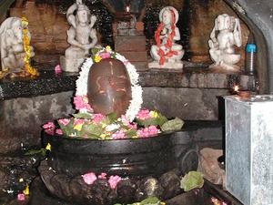 Satpura Queen Pachmarhi Photos