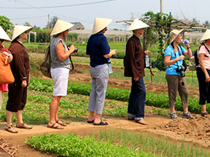Tra Que Vegetable Village Photos