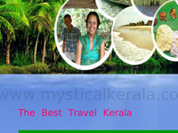 Tour Operator In Kerala