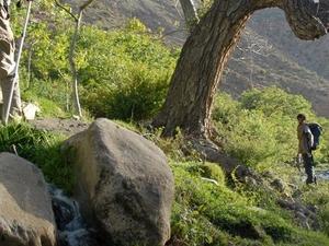 Toubkal Trek & Climb Photos