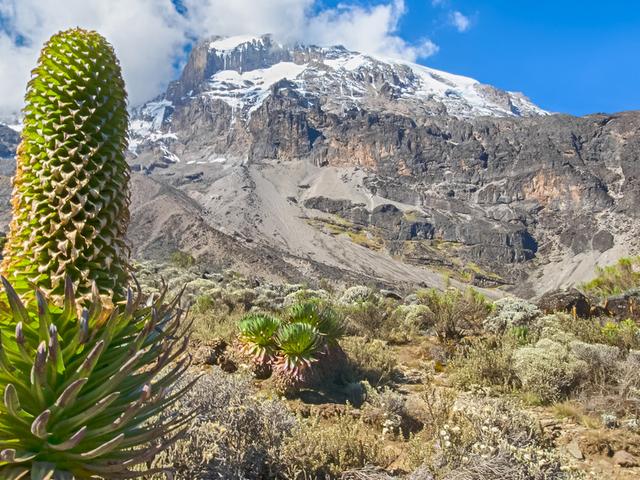 6 Days Mount Kilimanjaro Rongai Root Photos