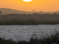 Safari Amboseli Sun Set
