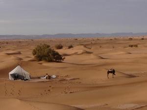 Trek Désert Maroc Photos