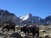 Everest High Pass Via Renjola