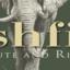 Bushfind, Safaris