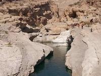 Desert & Wadi Tour